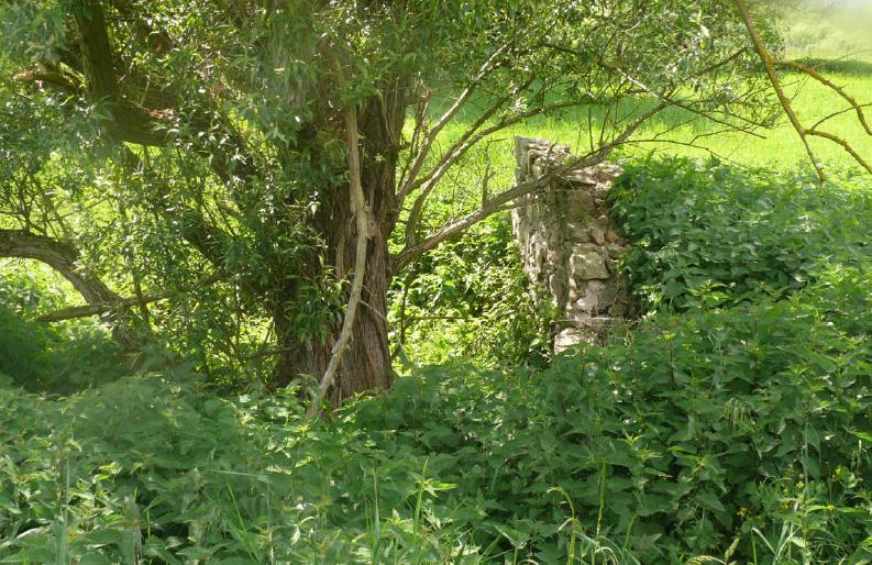 Vestiges des murs et fossés de la maison forte des Hotteaux